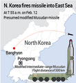 N. Korea fires missile into East Sea