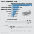 Cause of deaths in 2016