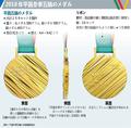 2018年平昌冬季五輪のメダル