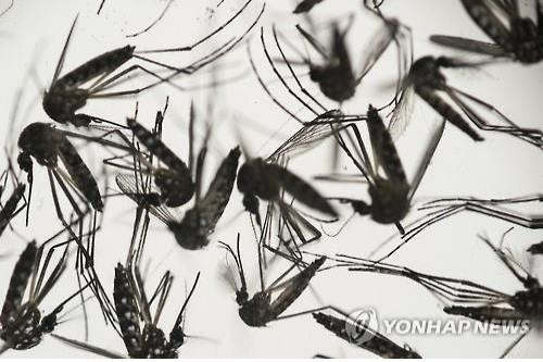 (LEAD) All suspected Zika virus cases test negative