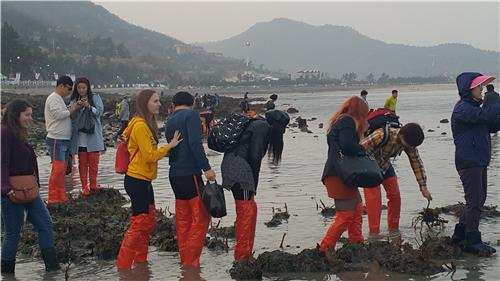 (Yonhap Feature) 'Korea's Moses Miracle' brings all cultures to Jindo