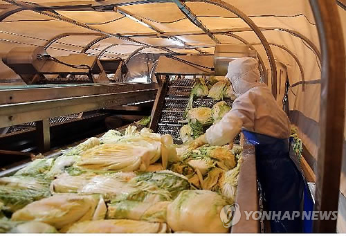(Yonhap Interview) Kimchi institute chief welcomes bold experimentation