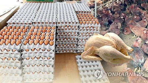 Gov't to release its egg, poultry stock to help stabilize prices