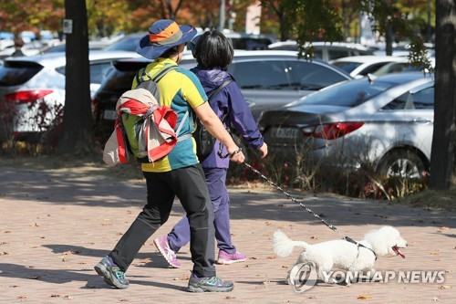 South Korea to implement stricter dog leash law in March