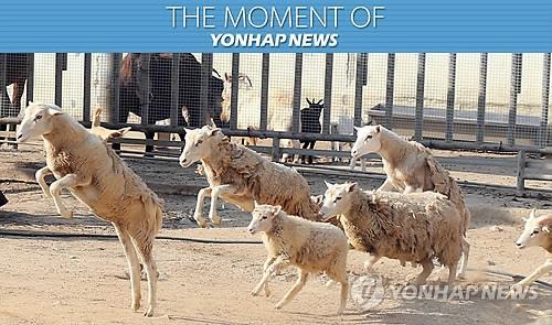 '동물 살맛나게, 관람객 볼맛나게'… 광주우치동물원 새 변화