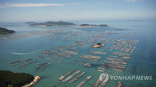 '수백억 전복어장' 둘러싼 분쟁…재판부 현장 재판