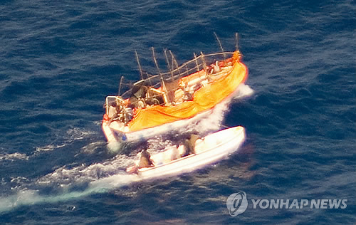 무장 해상특수경비원 승선 가능…해적피..