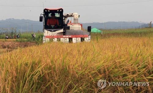 """""""올해도 벼농사해야 하나""""…영농철 앞둔 농민들 '걱정'"""