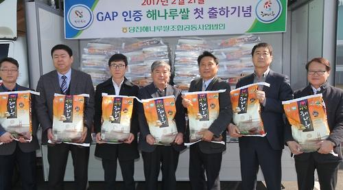 "'GAP 인증' 당진 해나루쌀 첫 출하…""당진쌀 명성 이어가"""