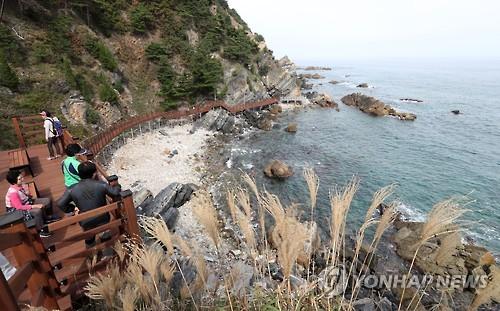 강릉 정동심곡 바다부채길 3∼5월 전면통제