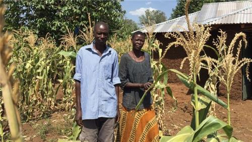 가난한 케냐 주민에게 조건 없이 현금 지원 땐 어떤 일 일어날까