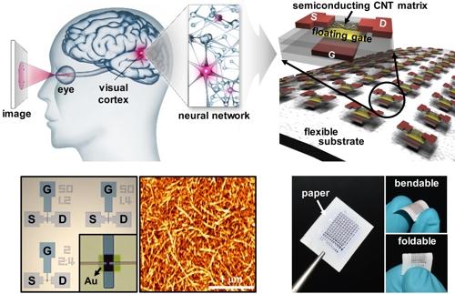 '1천억개 신경세포 보유' 뇌 닮은 인공두뇌시스템 개발