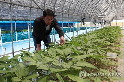 전북 친환경농업지구 농작물 친환경인증 증가