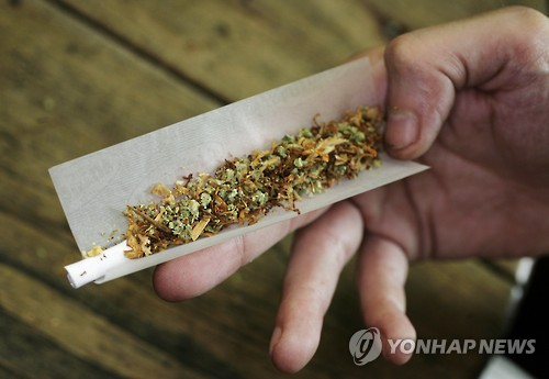 """美보건당국 """"마리화나, 통증·자폐 치료 증거 없어"""""""