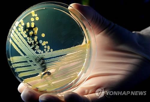 """""""간단한 질병도 치료 불가능"""" 무분별한 항생제 남용 경고"""