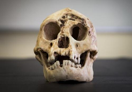2003년 印尼 발견 '호빗족'은 아프리카 기원 고대 인류