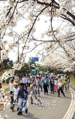 '꽃피는 봄날' 속초 영랑호서 29일 화전문화제