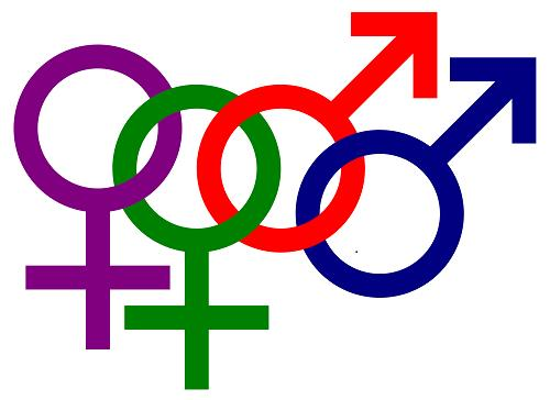 뉴질랜드 동성결혼 많은 이유 알고봤더니 절반이 외국인