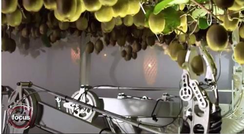 로봇, 이젠 농촌 일손 돕는다…뉴질랜드, 과일 따는 로봇 개발