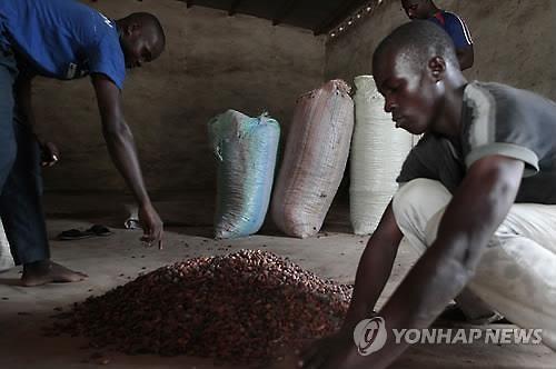 떨어지는 국제유가, 코코아 가격도 끌어내렸다
