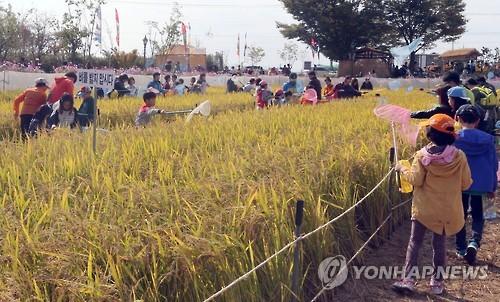 김제지평선축제 전문해설·통역안내 자원..
