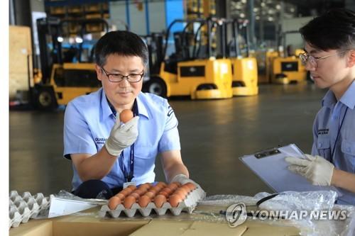 """온다던 태국 계란 '감감무소식'…""""수입업자 연락 안 돼"""""""