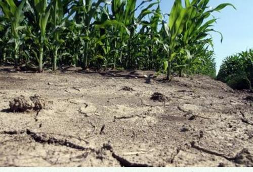 이탈리아 폭염 속 가뭄 비상…일부 지역에 비상사태 선포