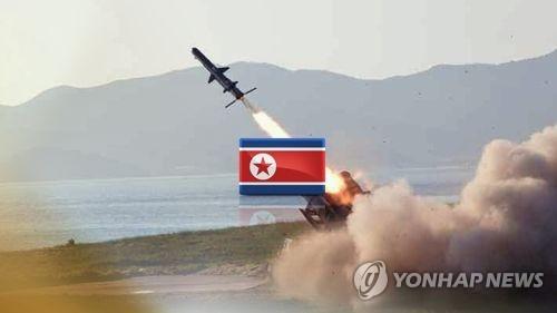 """""""북핵 해결위해 선제타격·대화보다 제재 강화해야"""""""