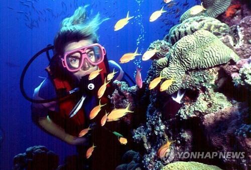 세계자연유산 대산호초 가치 48조원…오페라하우스 12배