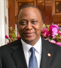 케냐 대선 두 달여 앞두고 케냐타 대통령 지지율 선두