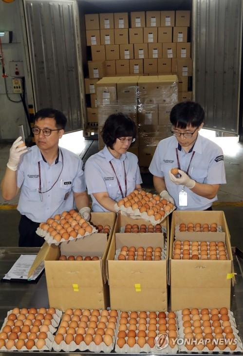 태국산 계란 2차 수입물량도 100만개…가격 안정효과는 '아직'