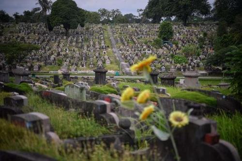싱가포르, 공군기지 확장 위해 무덤 8만개 파헤친다