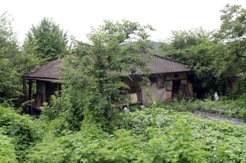 [농촌 빈집 5만채] ① '잡초·먼지가 주인행세' 마을마다 폐가 수두룩