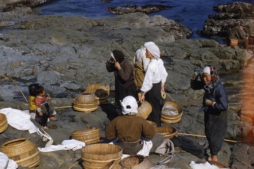 1952년 피란수도 부산서 물질 준비 해녀들 컬러사진 공개