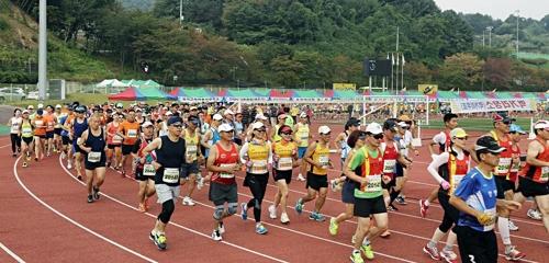 가평군 24일 자라섬 전국 마라톤 대회