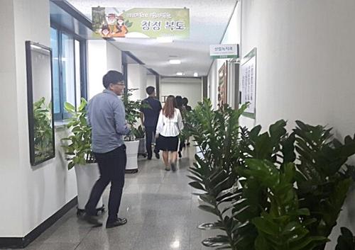 [카메라뉴스] 공기정화 식물로 숲 이룬 평택시 청사