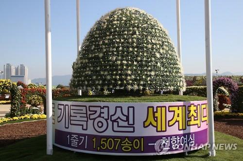 마산가고파국화축제 명품 '다륜대작' ..