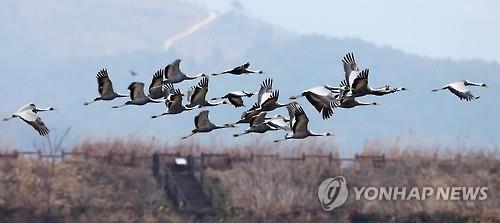 창원 주남저수지 사진미술관 포기…건설사 소송 취하