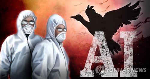 경기 화성 야생조류 분변서 H5형 AI 검출…고병원성 검사중