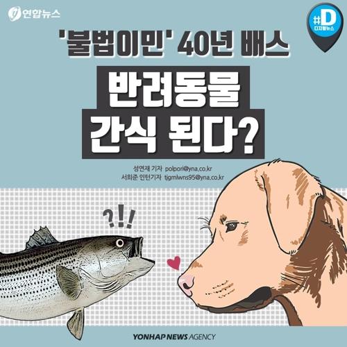 [카드뉴스] '불법이민' 40년 배스 반려동물 간식 된다?