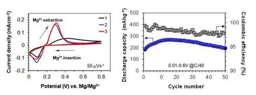 """마그네슘 이온 전지 소재 개발…""""비싼 리튬 대체"""""""