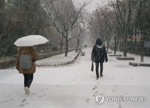 전북 고창·부안·정읍에 대설주의보…최대 10㎝