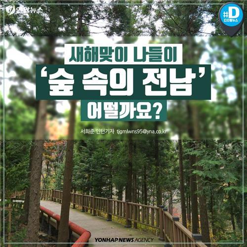 [카드뉴스] 새해맞이 나들이 '숲속의 전남' 어떨까요?