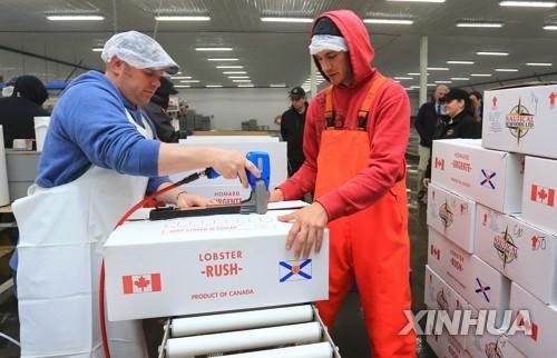 캐나다 12월 실업률 5.7%…41년 만에 최저 기록