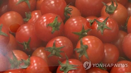 토마토·복숭아로 기호식품·화장품 개발한다