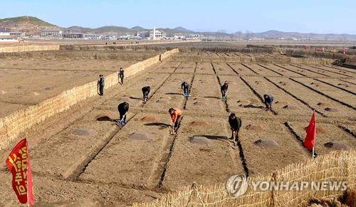 """""""FAO, 올해 북한서 농업지원사업 7건 진행"""""""