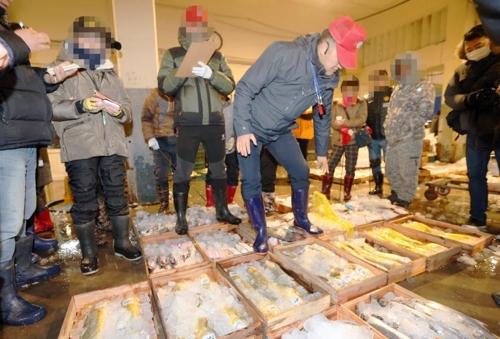 '황금빛 생선' 부세 찾아 제주 위판장에 몰려든 중국 상인들