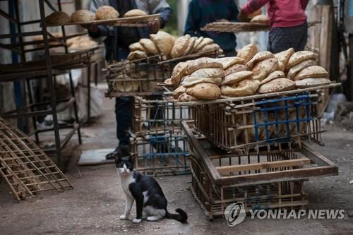 이집트, 중국 제치고 러시아 상품 최대 수입국