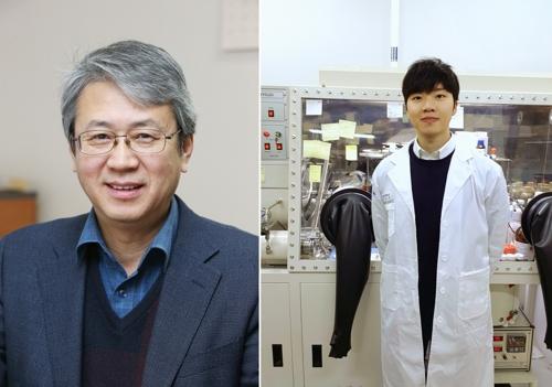 '모세관현상 닮은꼴' 고성능 리튬-황 전지 소재 구현