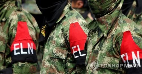 콜롬비아 군소 반군, 최대 반군 빠진 마약 재배지서 세력다툼
